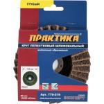 Диск лепестковый полировальный ПРАКТИКА 125 х 22 мм грубый 779-219